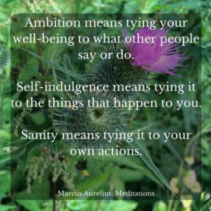 What Ambition Means - Marcus Aurelius